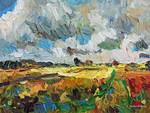 Dunkle Wolken, helle Felder