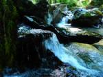 Biking to Tamihi Rapids~7/9/2021~5