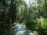 Biking the Vedder greenway~7/19/2021~1
