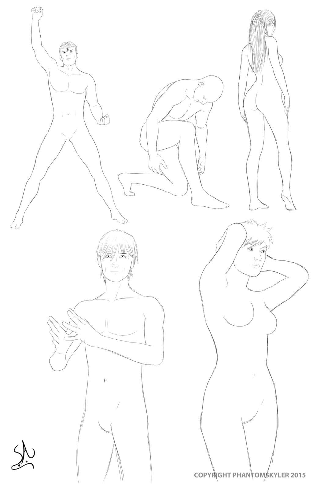 Anatomy Reference 1 by PhantomSkyler