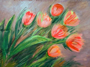 Tulips-heralds of spring