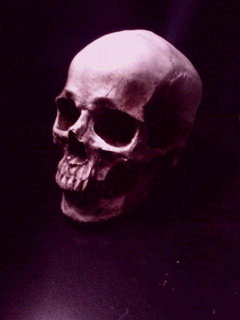 Dead... by Hatebreeder13