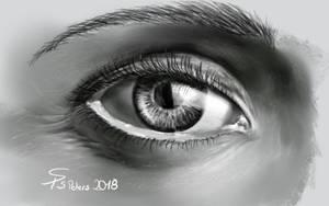 ... another eye by steffchep