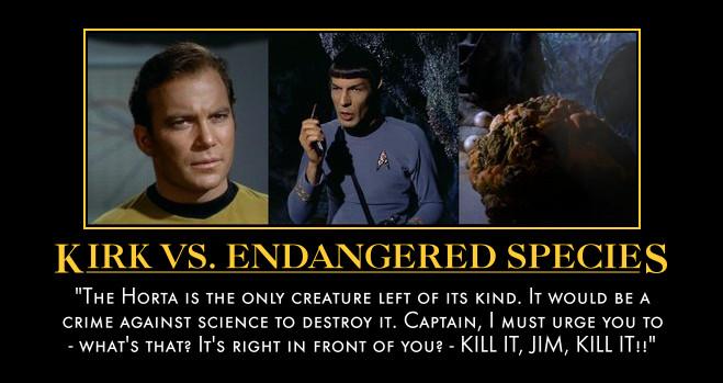Kirk-Spock motivational nr. 3 by Aevylonya