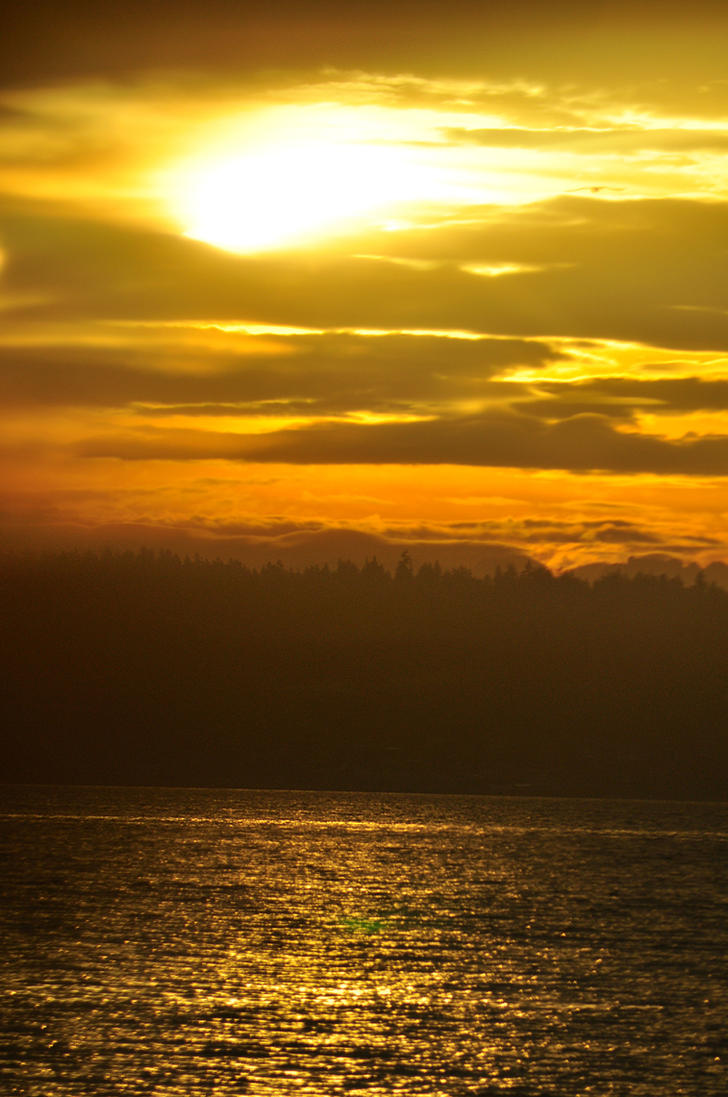 Sunrise by RosenEyes