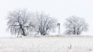 Cold Front Range Morning
