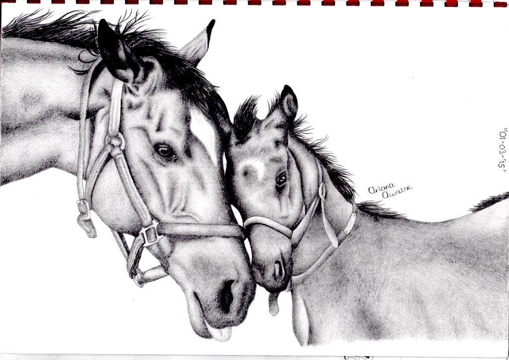Horses by Ariana-1997