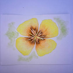 Watercolour flower 4 by Ariana-1997