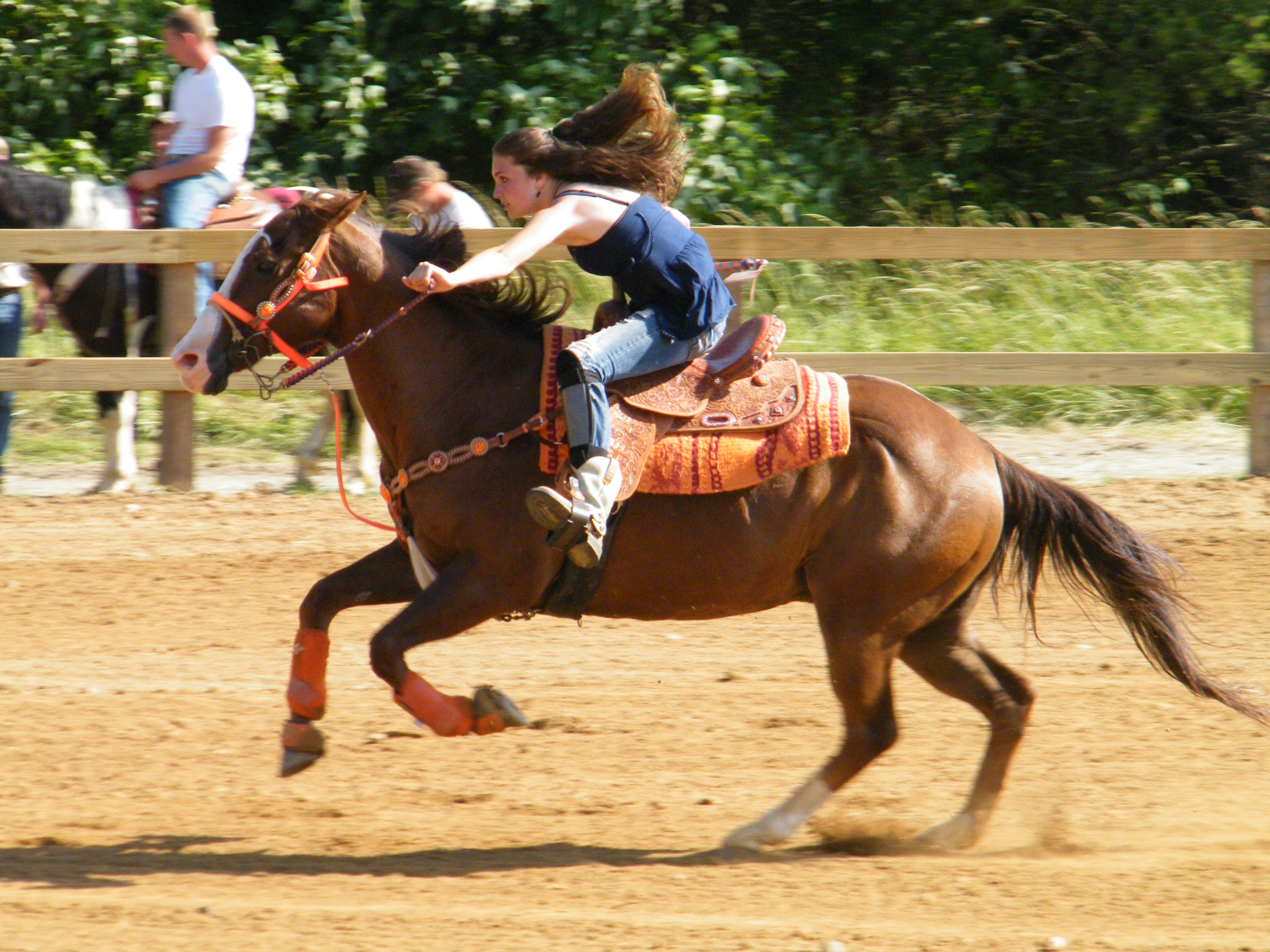Barrel Racing Quotes Barrel Racers And Rubber Bands  Chronicle Forums