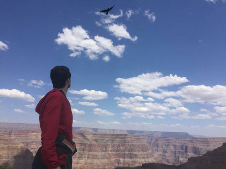 Grand Canyon Eagle and Red