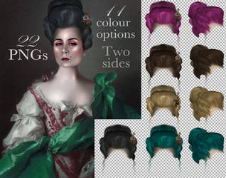 Rococo wigs PNGs PNG Stock