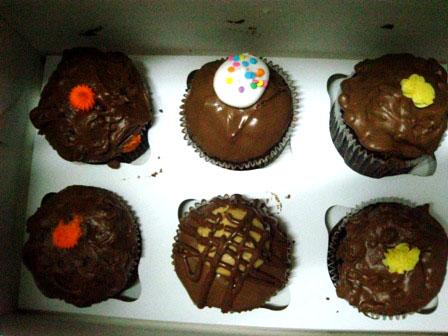 cupcakes by kim3o