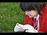Alucard with flowa -  cosplay by AnoKun