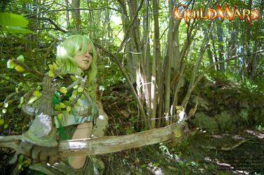 Guild Wars: Trapper's Focus