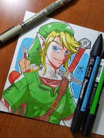 Day 309 Link by TomatoStyles
