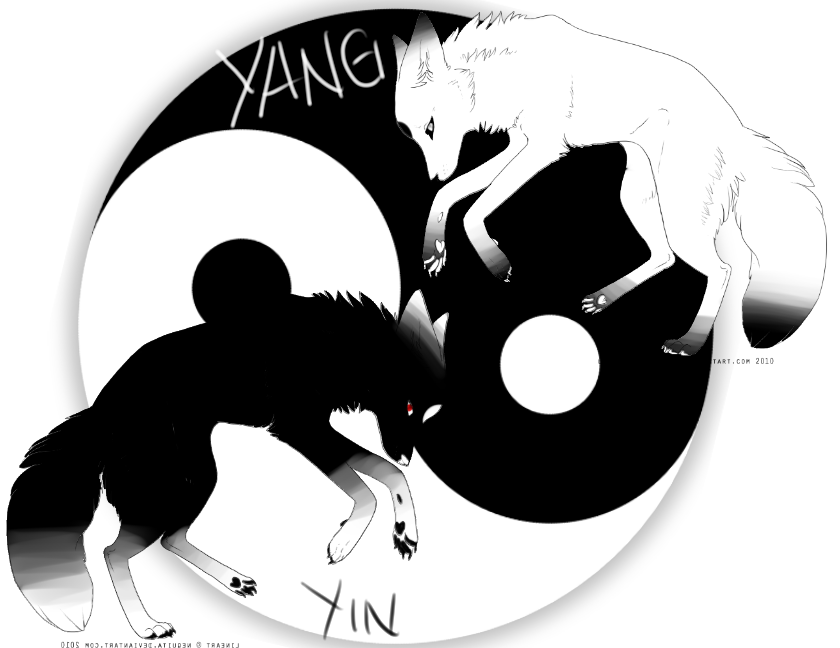 Buy Here Pay Here Ma >> Yin-Yang wolf adopt by xXKeymaAdoptsXx on DeviantArt