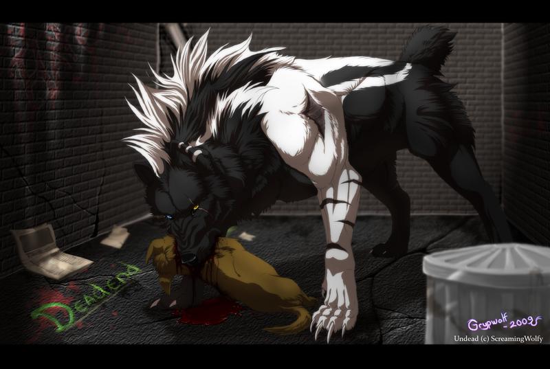 Dead end by Grypwolf