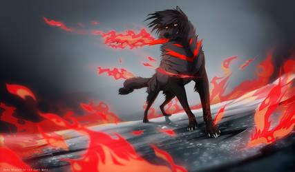 Madfire + Video by Grypwolf