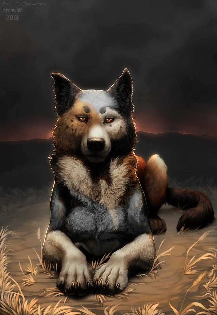 Radical Dreamer by Grypwolf