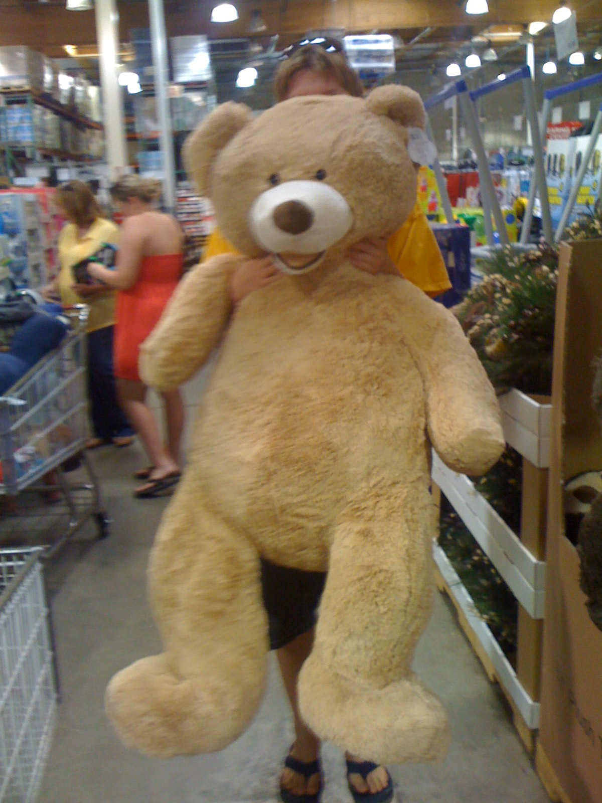 Giant Teddy Bear By Mikedw96 On DeviantArt