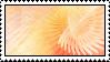 SxZ Template 007 by SquallxZell-Leonhart