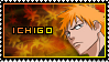 Ichigo by SquallxZell-Leonhart