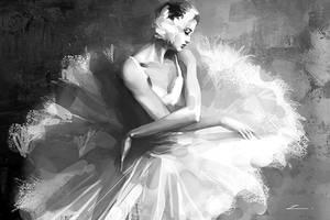 ballet by zhuzhu