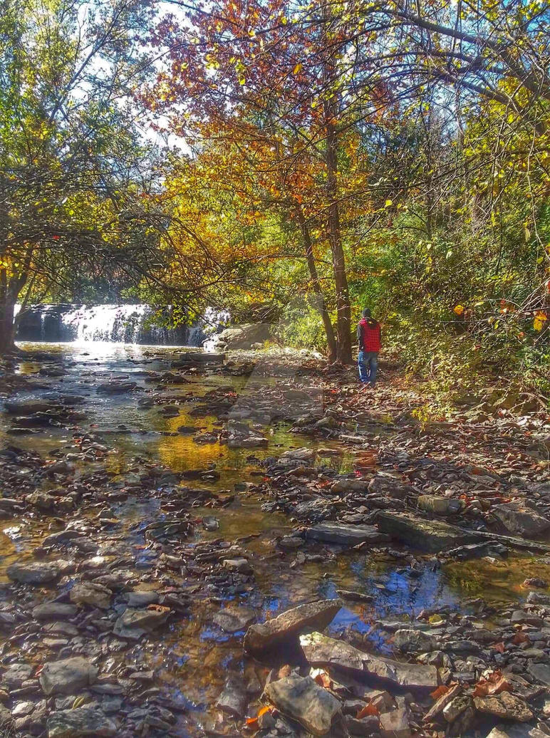 Cedar lake nature walk by Laughingbird11