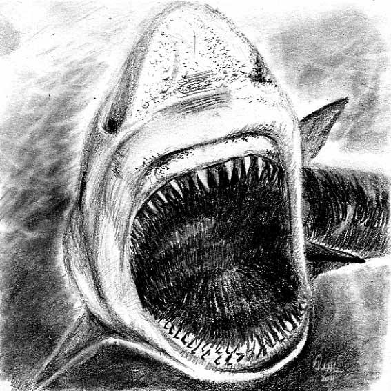 Shark Fright-mare by philippeL on DeviantArt