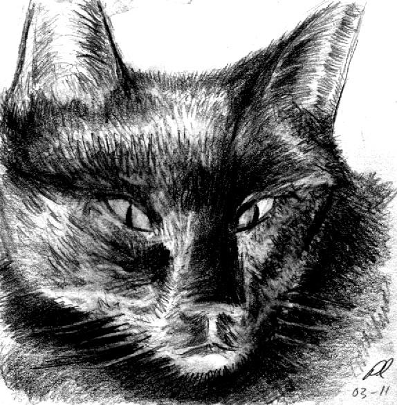 My Sweet Kitty by JocelyneR by philippeL