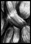 Knot of Hair