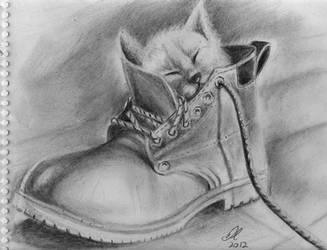 Boot-iful Kitty by philippeL