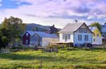 Backyards in the Village - For Teresa