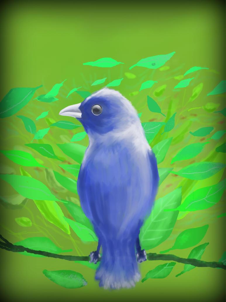 Blue Bird by philippeL