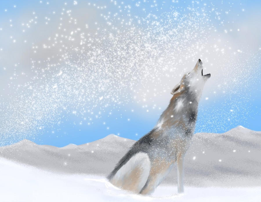 Wolf In The Snow by philippeL