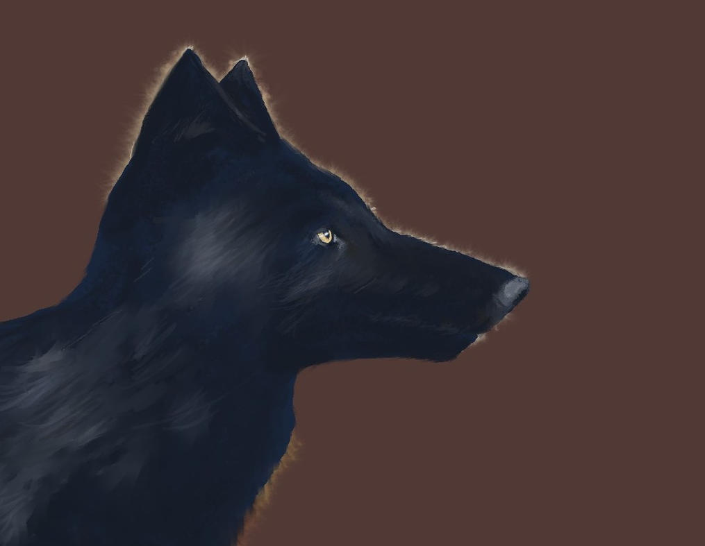 Black Wolf WIP by philippeL