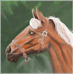 Horse Head (ArtRage)