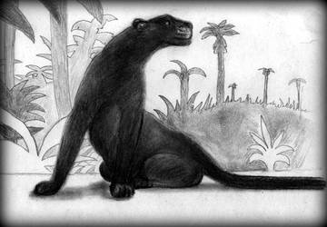 The Jungle Book by philippeL