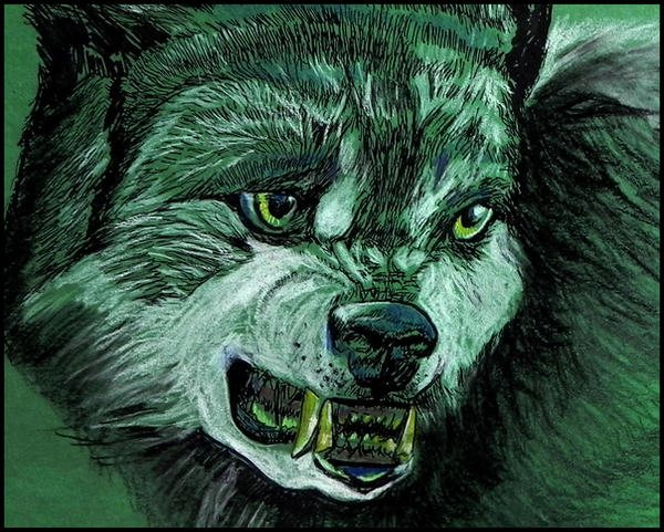 Snarling Wolf by philippeL