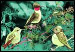 Hummingbirds by philippeL