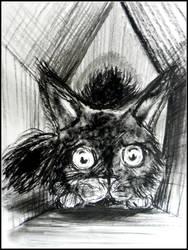 Little Kitten on a Little House by philippeL