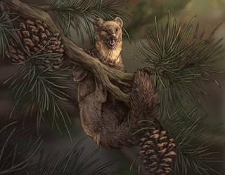 Pine Noodle by Deertush
