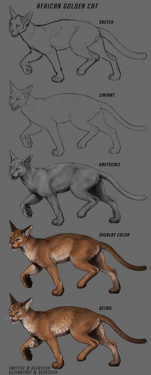 Lioden: Golden Cat Walkthrough