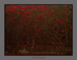 redlight by f0rTyLeGz