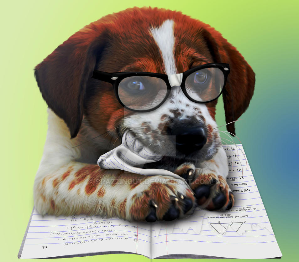 Dog Ate my Homework by SpazzinOut