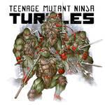 Teenage Mutant Ninja Turtles 1984 Version