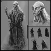 Elder Elf concept by Parkhurst
