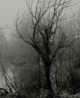 Abandoned... by thewolfcreek