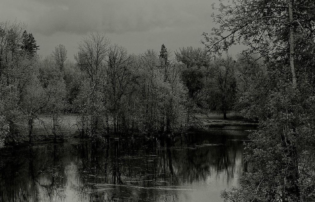 Black lake... by thewolfcreek