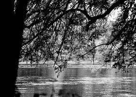 Here be rivers edge... by thewolfcreek